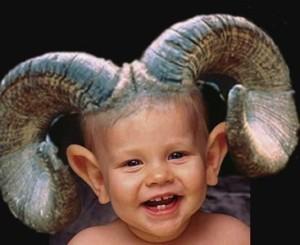 1425987583864-goatboy